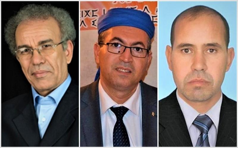 """في ندوة لـ""""أزافوروم"""".. أكاديميون يبرزون أهمية الانخراط الحزبي والسياسي لخدمة الأمازيغية"""