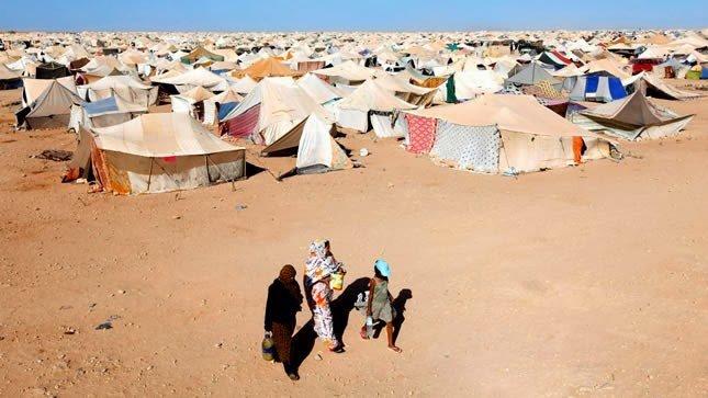 اللجنة الرابعة للجمعية العامة للأمم المتحدة: المطالبة بإنهاء مأساة المحتجزين في مخيمات تندوف