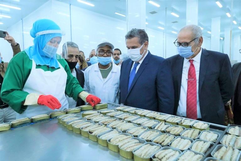 باستثمار ناهز مليار درهم.. أخنوش يدشن أربع وحدات صناعية بالداخلة (صور)