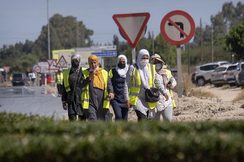 المغرب يفتح الحدود مع إسبانيا لإعادة 12 ألف عاملة في ضيعات الفراولة