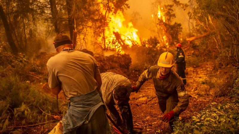 الجزائر تحترق في غاباتها.. مقتل 25 عسكريا و13 مدنياً في عشرات الحرائق بتيزي وزو