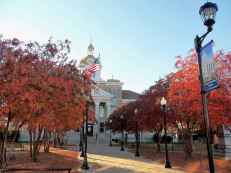 Courthouse-Pic
