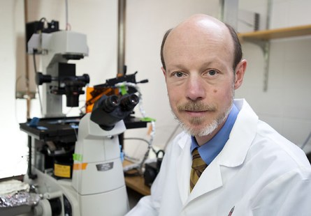 8 Million Grant To Support Research To Repair Hearts With