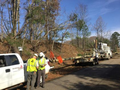 Alabama Power crews work to restore outages after storm damage in Reform. (David Bailey/Alabama NewsCenter)
