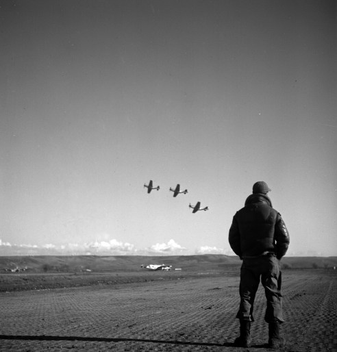 An unidentified Tuskegee airman at an airfield, Ramitelli, Italy. (Toni Frissell Collection, Library of Congress Prints and Photographs Division)