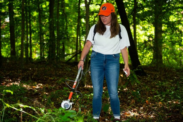 Auburn student Victoria Ashby carries a backpack aspirator, similar to a gentle portable vacuum, to collect mosquitoes for molecular research including virus testing. She is part of a School of Forestry and Wildlife Sciences research team investigating the presence of the Zika-carrying Aedes aegypti mosquito in Alabama. (Philip Smith)
