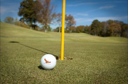 Golfing at Lake Guntersville State Park (file)