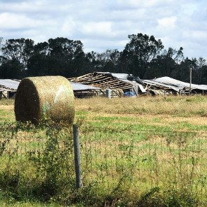 Many types of structures were damaged during the storm. (Wynter Byrd)