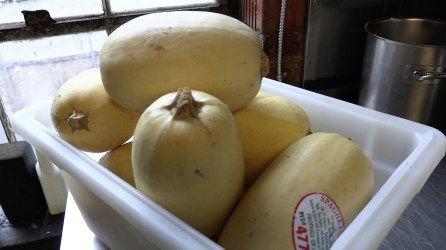 Nourish Foods starts out with fresh, high-quality ingredients. (Mark Jerald/Alabama NewsCenter)