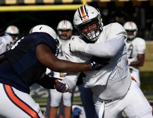 Auburn's Derrick Brown should be among the top picks in the NFL Draft, analyst Mel Kiper Jr. says. (Todd Van Emst/AU Athletics)