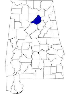 Blount County is 39th largest among Alabama counties and is located in the north-central part of the state. (From Encyclopedia of Alabama, courtesy of University of Alabama Cartographic Research Laboratory)