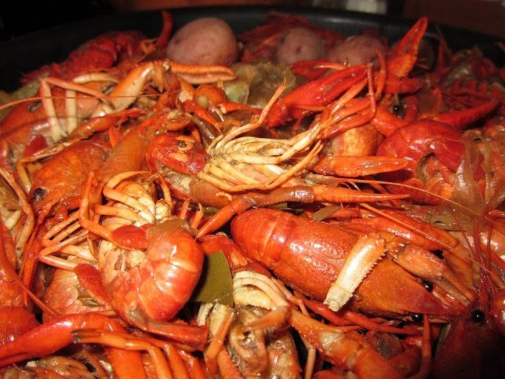 The Zydeco Crawfish Festival is the place to go for tasty food. (Contributed)