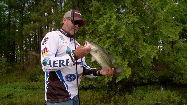 Fishing tips from professional angler Jeff Holland