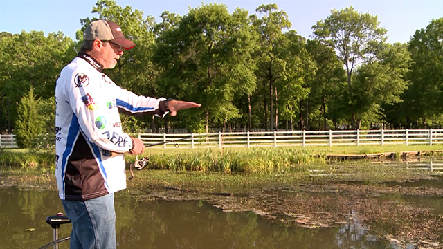 Why aquatic plant management is important