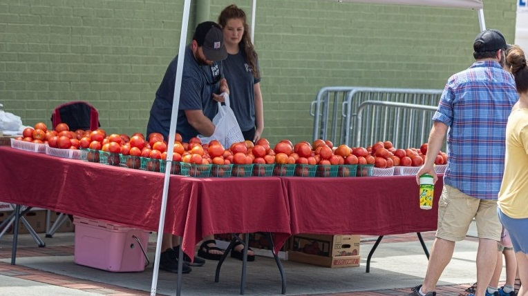 There's no debate: Slocomb has some of Alabama's and the world's best tomatoes