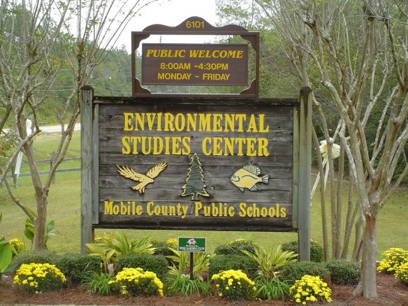 For the staff at Mobile's Environmental Studies Center, one mission stands above all: to help others love nature as much as they do. (contributed)