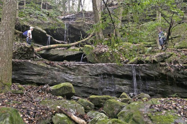 A multi-tiered waterfall along Brushy Creek. (Contributed)