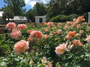 Bellingrath Gardens in Mobile (contributed)