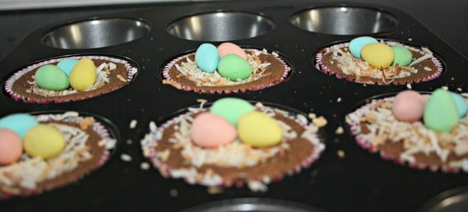 chocolate Cheesescake Birds nest