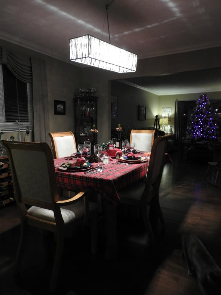 LED Pendant Light from Home Depot in the Dining Room