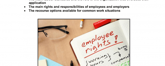 THE LABOUR MARKET IN CANADA: Working conditions, your rights and responsibilities