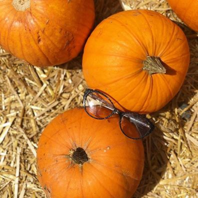 Photo of Lafont Paris eyeglasses and pumpkins.