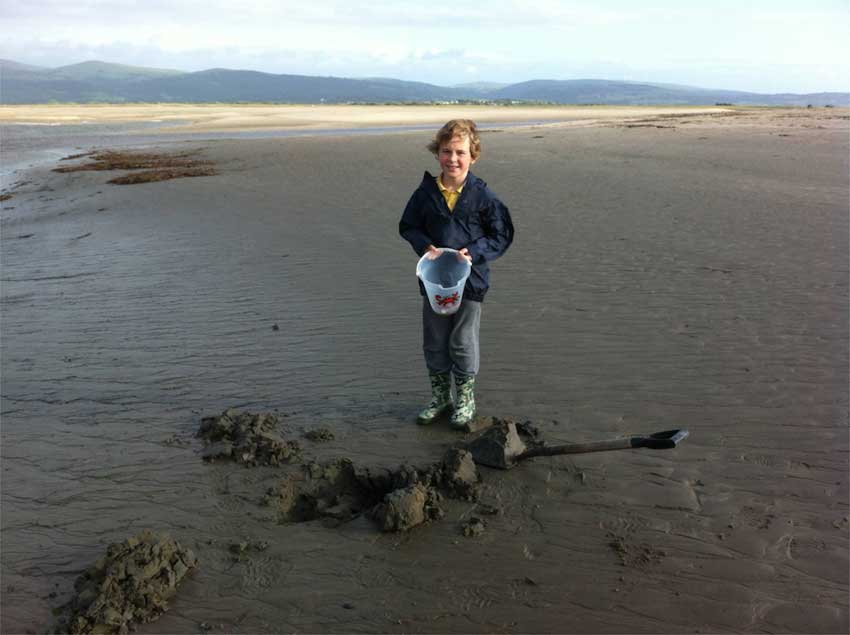 Digging for Bait at Ynyslas