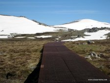 Metal Boardwalk to Kosciuszko