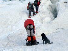 Virtual Everest 2020: Summit Plan