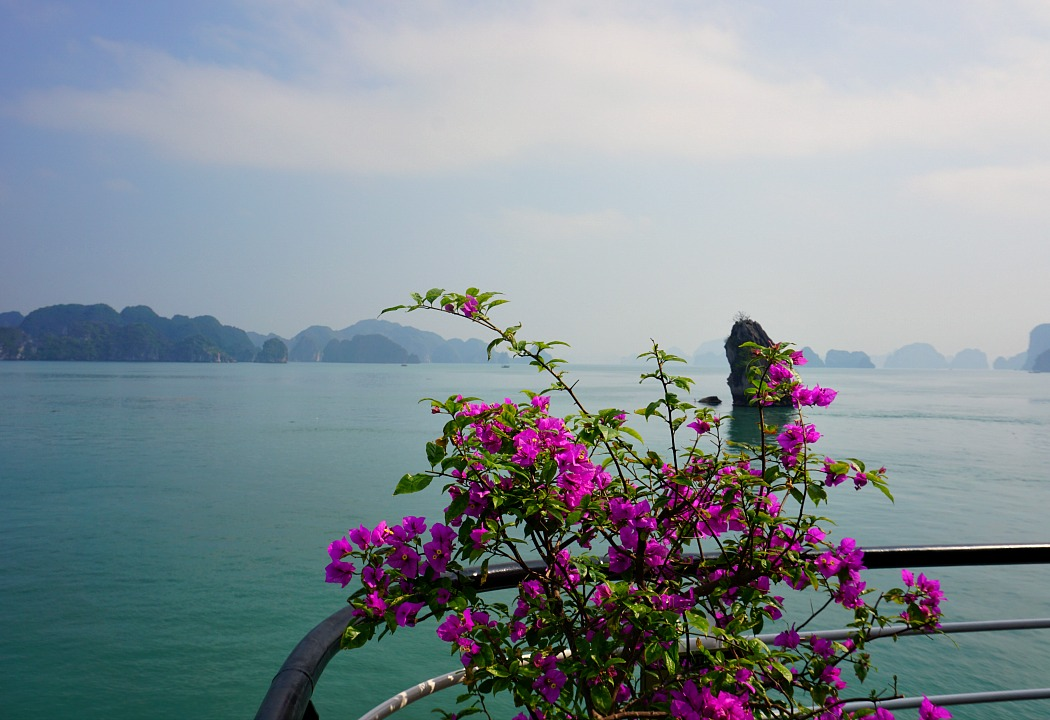 Five-Reasons-for-an-Overnight-Cruise-in-Halong-Bay