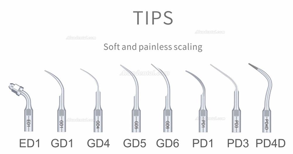 Buy Cheap Woodpecker® DTE D7 Dental Ultrasonic Scaler