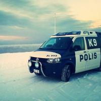 Falsk asylsökare kastades ut ur landet av åländsk polis