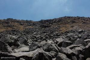 Una roca, un gusto singular
