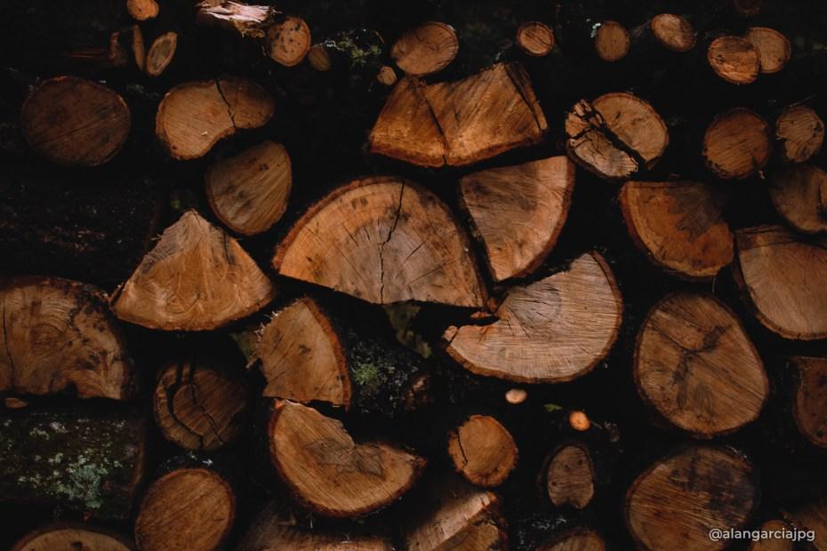 Pequeños troncos de madera cortados, en Fray Francisco, Hidalgo, México