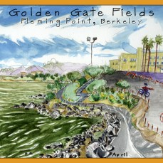6_Goldengate_Fields_North