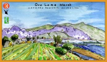 Oro_Loma_Marsh_Ochre