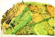 landscape3