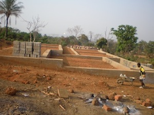 Guinea foundations