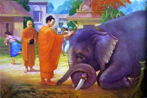 Buddha calms a raging elephant