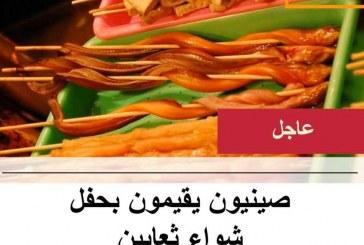 القبض على صينيين أقاموا حفل «شواء ثعابين» بالقاهرة الجديدة ( مدينتى)