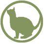 Adopt_Cat