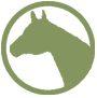 Adopt_Horse