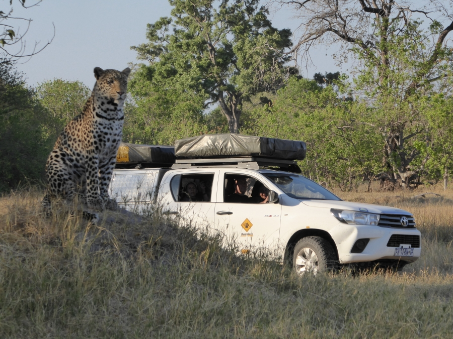 Botswana, vivere in un documentario