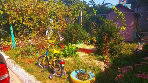 гостевой двор камышовая бухта (15)