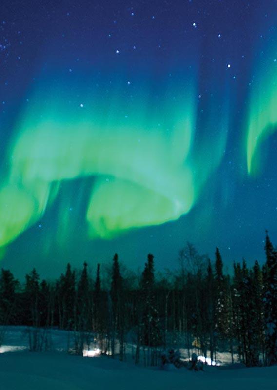 denali backcountry northern lights