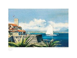 Antibe-bordered-2012-website