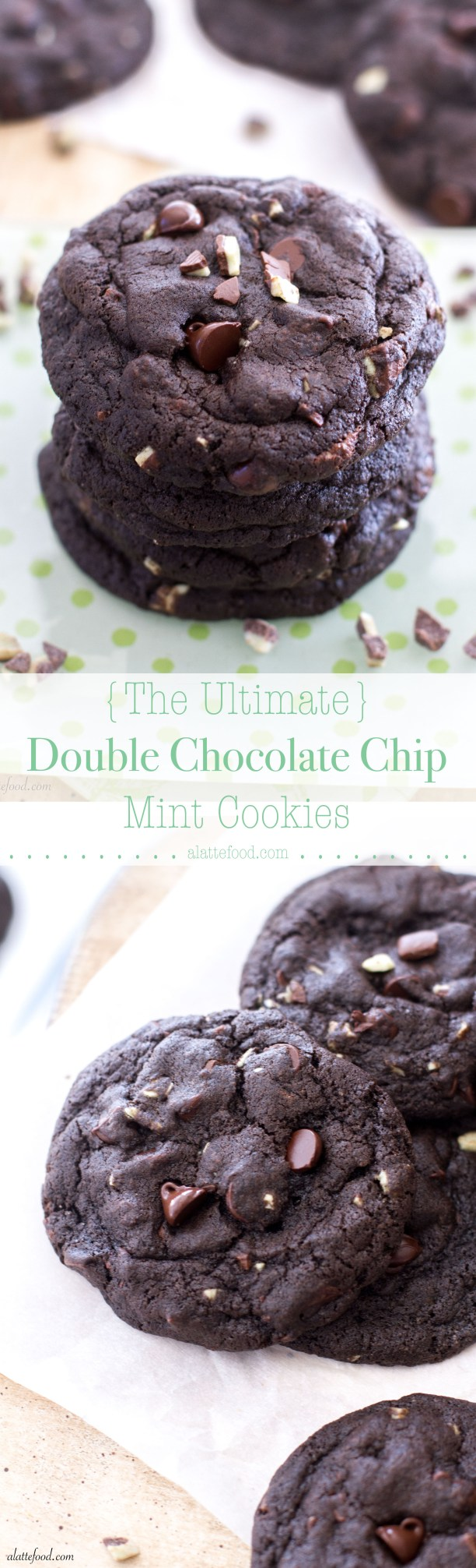 Double Chocolate Chip Mint Cookies | A Latte Food