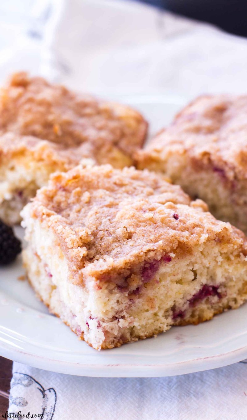 This Blackberry Swirl Coffee Cake Recipe is a simple yet elegant addition to any breakfast, brunch, or afternoon coffee break! This is my favorite homemade coffee cake recipe, and the addition of blackberries takes it over the top! This blackberry coffee cake recipe is light, fluffy, filled with a blackberrypuree, and topped with a sweet brown sugar topping!