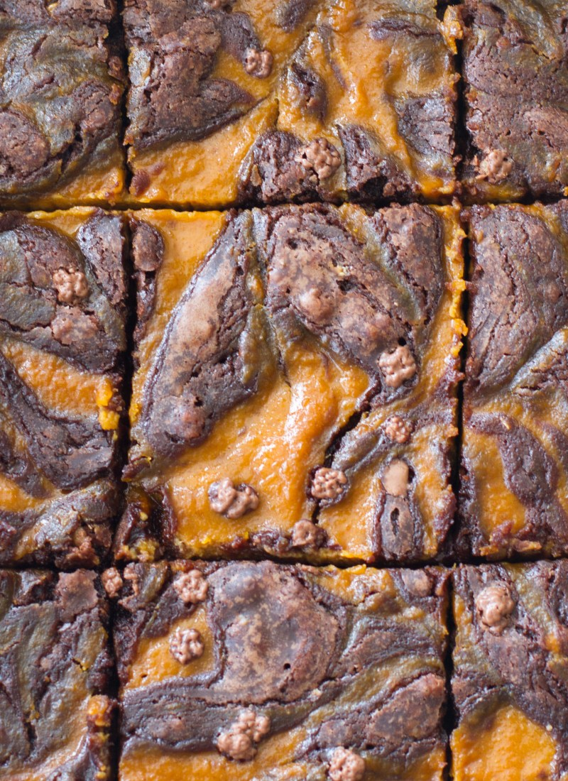 This easy pumpkin cheesecake brownie recipe is perfect for the fall season! Only a few ingredients stand between you and these rich brownies!