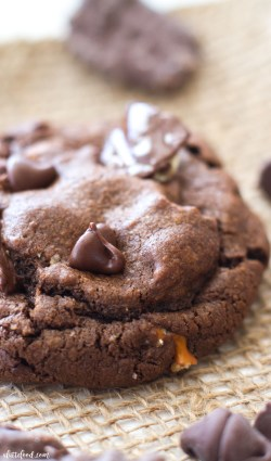 This easy double chocolate chip cookie recipe is THE cookie for any chocolate dessert lovers! These rich chocolate cookies are full of chocolate chips, chocolate covered potato chips, and salty pretzels! Salty and sweet at its finest.